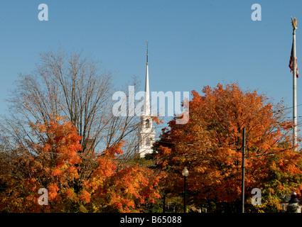 Autumn in Cambridge- Harvard University, Cambridge MASS, New England USA - Stock Photo