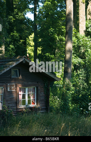 Log cabin in forest - Stock Photo
