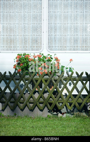 Geraniums in window box outside mobile home - Stock Photo