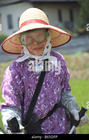 An old Japanese lady cutting grass - Stock Photo