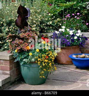 Containers with Mixed Planting on a garden terrace - Stock Photo