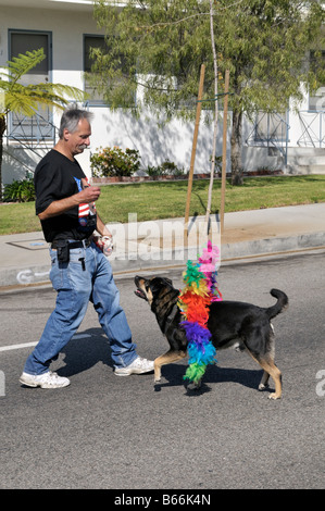 A local resident of Westchester, Los Angeles, California having fun with his obedient dog - Stock Photo