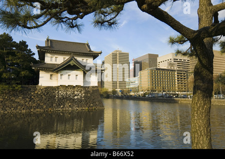 Imperial Palace Outer Gardens - Stock Photo