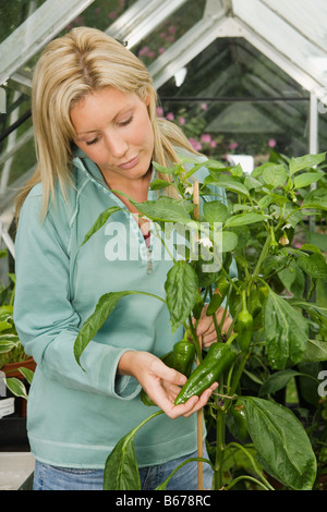 Woman holding fresh green peppers - Stock Photo
