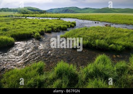 Stream flows through summer grasslands Banlashan Mountain Arshihaty Stone Forest Unesco Geopark Inner Mongolia China - Stock Photo