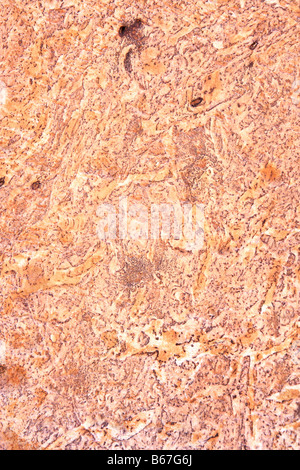 Marble stone surface for background