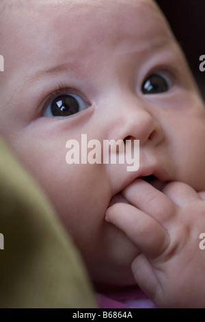 Close-up of Baby - Stock Photo