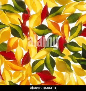 Colourful pasta - Stock Photo