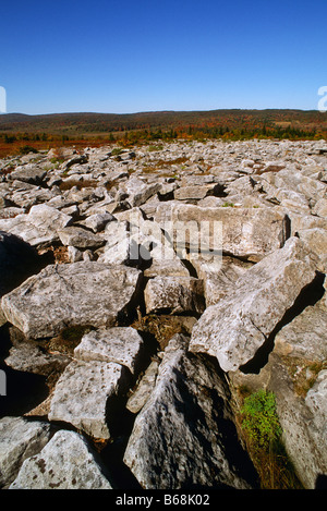 Mountain overlook Dolly Sods West Virginia - Stock Photo