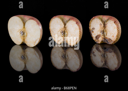 Stages Of Decay A Rotting Apple Stock Photo 74879692 Alamy