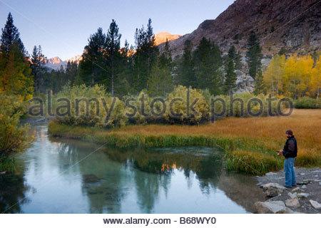 Alpenglow in eastern sierra nevada and cottonwood trees in for Bishop creek fishing