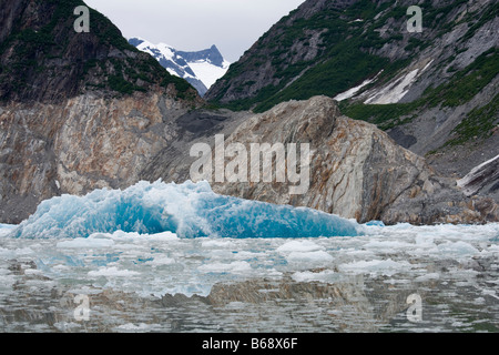 USA Alaska Tracy Arm Fords Terror Wilderness Blue icebergs calved from South Sawyer Glacier surrounded by steep mountains