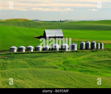 WASHINGTON - Barn and grain silos in a farm field in the fertile Palouse area of Eastern Washington . - Stock Photo