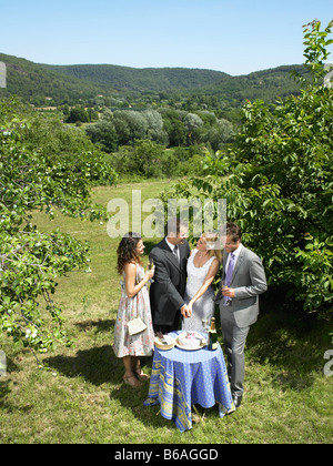 Wedding couple cutting cake in garden - Stock Photo