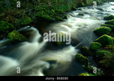 fast-flowing stream in the Black Forest Germany - Stock Photo