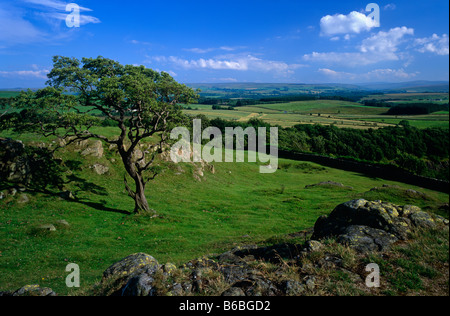 Walltown Crags near Greenhead, Hadrian's Wall National Trail, Northumberland National Park - Stock Photo