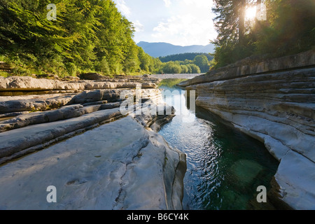 River flowing through forest, Taugl, Tennengau, Salzburg, Austria - Stock Photo
