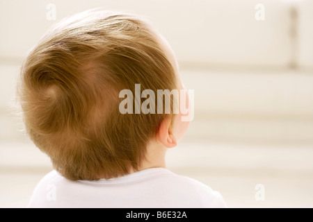 Rear view of baby boy (6-11 months) head - Stock Photo
