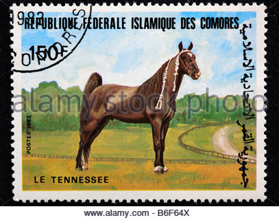 Tennessee Walker horse, postage stamp, Comoros, 1983 - Stock Photo