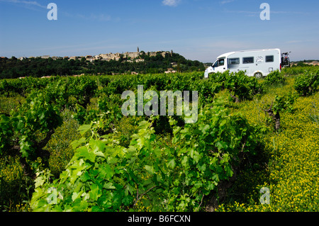 Caravan in front of vineyards, Provence, France, Europe - Stock Photo