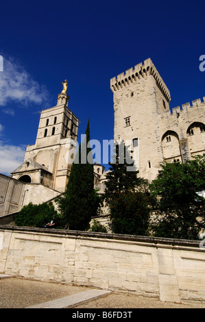 The Popes' Palace in Avignon, Provence, France, Europe - Stock Photo