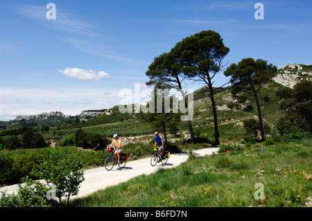 Cyclists near Les Baux de Provence, Provence, France, Europe - Stock Photo