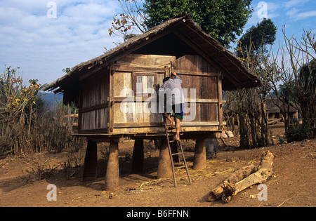 Rice store or granary raised up on Vietnam-era cluster bomb casings, Hmong village in Xieng Khuang province, Laos - Stock Photo