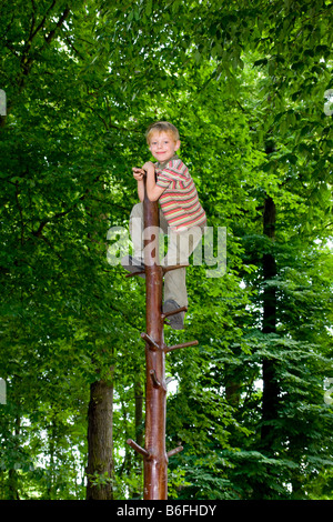 A boy, six years old, climbing in the forest on a climbing trunk - Stock Photo