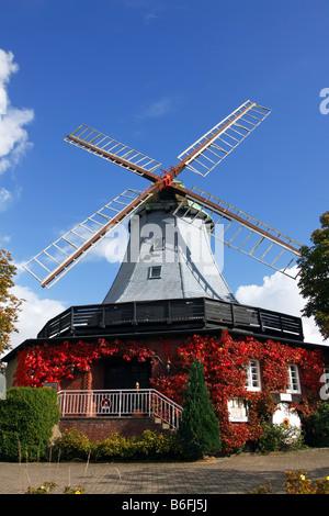 Historic windmill in dutch style, Pirsch Mill, Hamfeld Mill, restaurant, hotel, Hamfelde, Herzogtum Lauenburg, Schleswig - Stock Photo