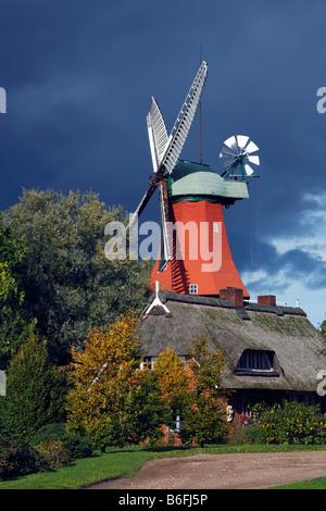 Historic windmill in dutch style, Reitbrook Mill, Vierlande, Marschlande, Hamburg, Germany, Europe - Stock Photo