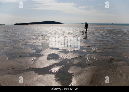 Backlit man with a dog on an isolated beach - Stock Photo