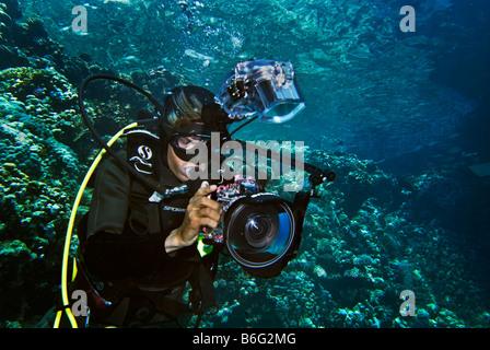 photographer diver scuba diving underwater under water camera reef riff at Marsa Nakara Marsa Alam camera flash - Stock Photo