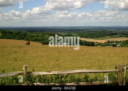 The South Downs near Clayton, West Sussex. - Stock Photo