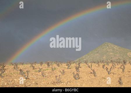 Rainbow in wine region of Rioja, La Rioja, Spain - Stock Photo