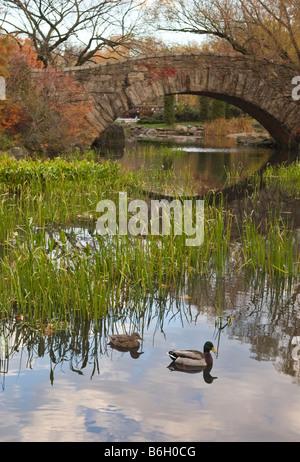 Gapstow Bridge in Central Park, New York City - Stock Photo