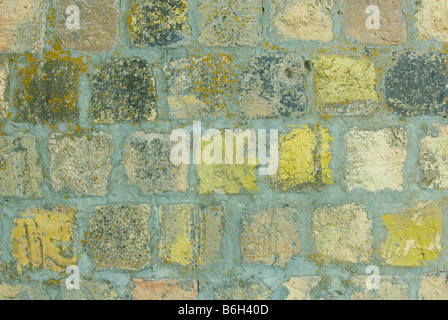 background of green grunge stones - Stock Photo