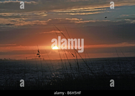 siery sunrise off NAS Pensacola Beach towards Gulf Breeze Florida with sea oats blowing in the breeze and whispery - Stock Photo