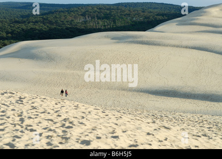 Arcachon France Sand dunes of Pyla & Pine forests - Stock Photo