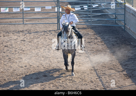 Mexican Cowboy Stock Photo Royalty Free Image 22429393