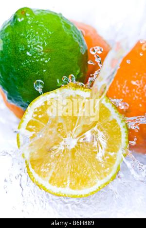 Water splashing down on citrus fruit - Stock Photo
