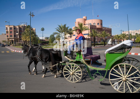 Marrakech Morocco North Africa December The driver of a two brown horse drawn caleche looking for passengers - Stock Photo