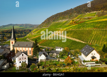 beautiful village and vineyards along the mosel river in germany - Stock Photo