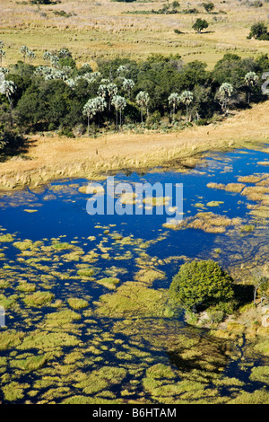 Aerial view of islands and waterways Central Okovango wilderness area in the Delta - Stock Photo