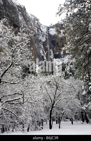 CALIFORNIA - Bridalveil Falls after a winter storm Yosemite Valley area of Yosemite National Park. - Stock Photo