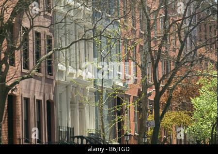 USA, New York, New York City, Manhattan: Chelsea, Springtime Blossoms, Chelsea Historic District West 22nd Street