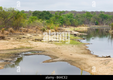 water hole water hole river riverbed bed wide view landscape south africa desert red dust dirt road drive way safari - Stock Photo