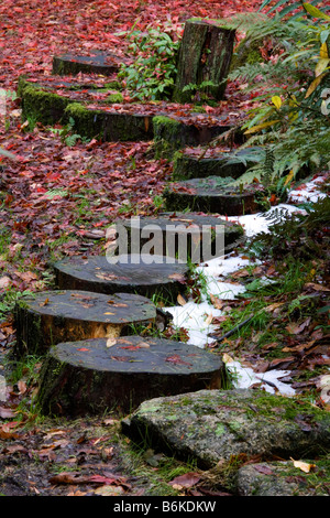 Wooden stepping stones in the Japanese garden at Giggle Alley in Eskdale Cumbria - Stock Photo