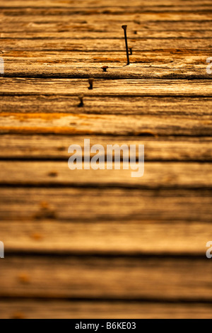 Rusty nails in a row implanted in wood one of them sticking out selective focus - Stock Photo