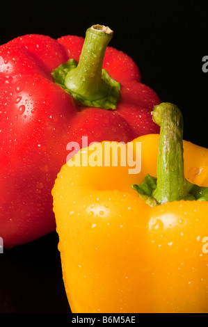 Vertical image of two peppers of different colors, red and yellow with water beading up on the surface of the peppers. - Stock Photo