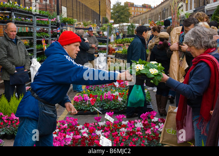 Columbia Road flower market during the Sunday market day in East London England UK - Stock Photo